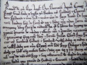 Ricardus, Dei gratia, rex Anglie, dux Normannie et Aquitanie, comes...